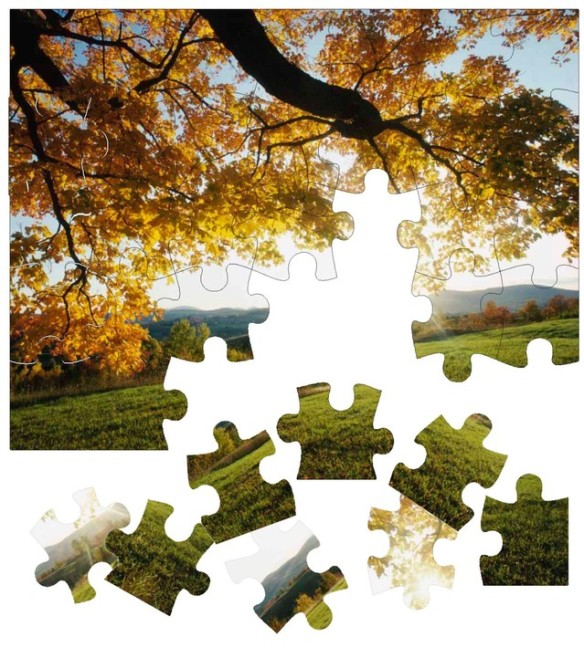 photo puzzle missing pieces