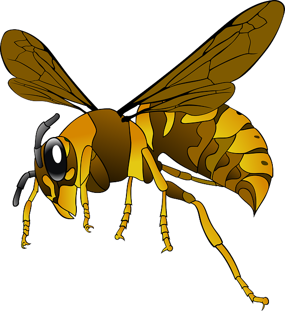 A graphical image of a hornet.
