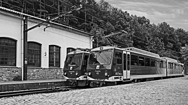 Two trains sitting side by side at a station.