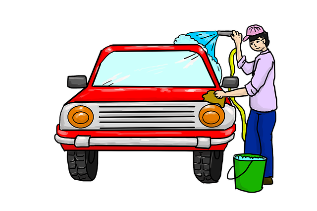graphic of woman washing car