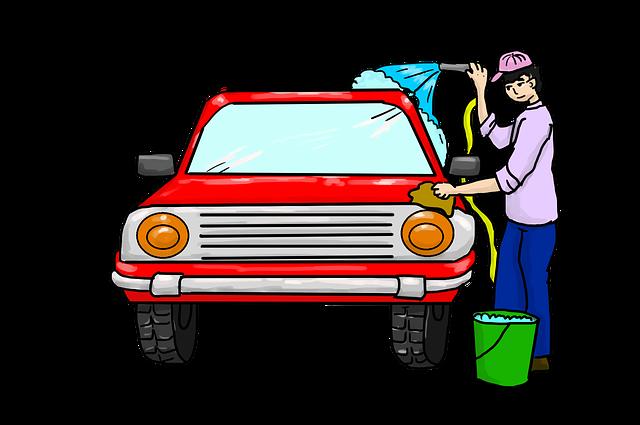 graphic of woman washing car