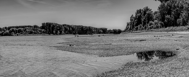 black and white photo of Rhine River at low tide during drought