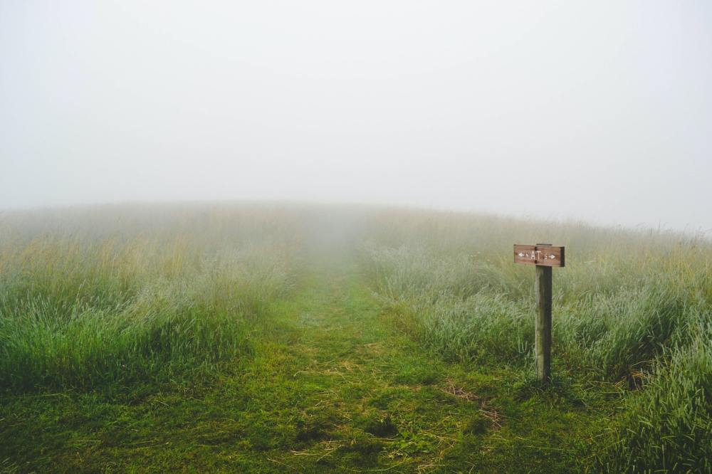 A large open and grassy hill with a grass path disappearing into dense fog and a small wooden directional sign on the right of the picture.