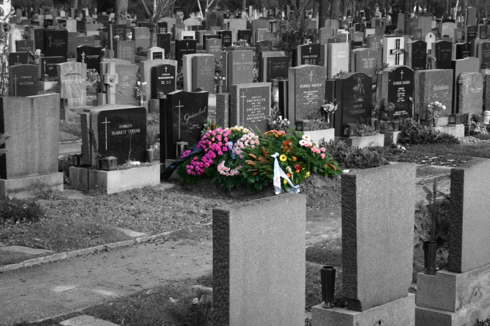 A black and white photo of a big and well packed cemetery with a large collection flowers on one of the graves in full color