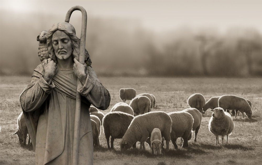 A sepia photo of a statue of Jesus Christ holding a shepherd's hook and a lamb around His neck with live sheep grazing in the background