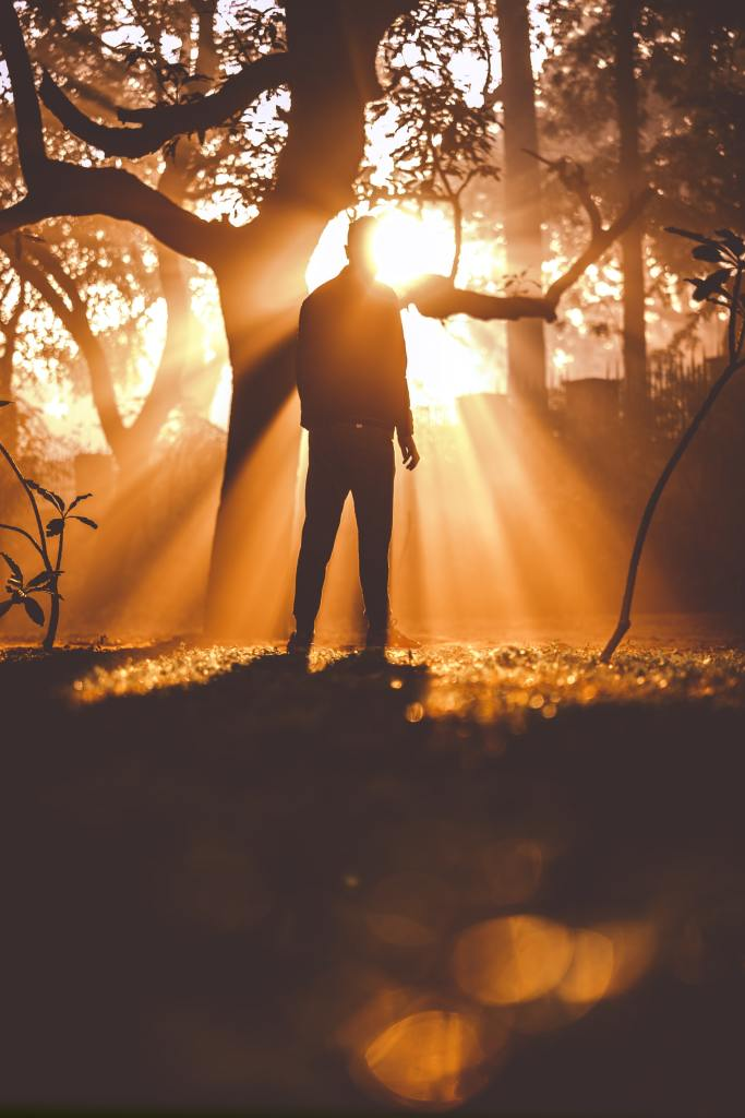 A silhouette of a man standing near a tree in a forest with orange sunbeams streaming down around him